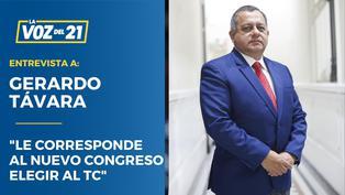 """Gerardo Távara: """"La mayoría no reúne los requisitos para ser del TC"""""""