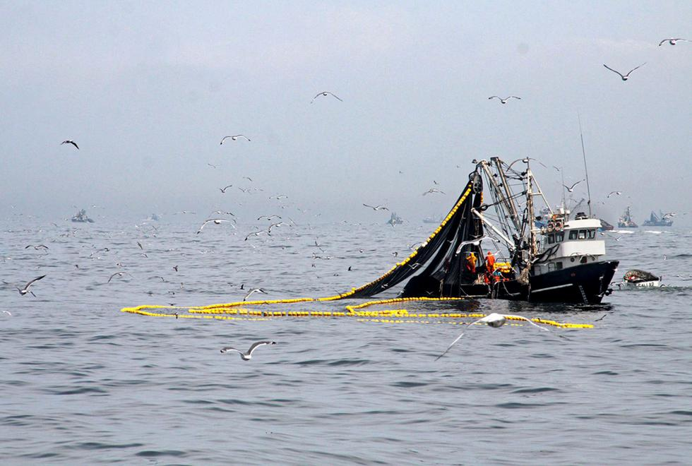La primera temporada de pesca concluirá hoy a las 23:59 horas. (Foto: Difusión)