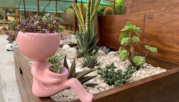 Las plantas se pueden adquirir junto a macetas decorativas. (Foto: Parque de las Leyendas)