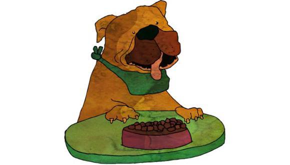 No solo grasas: nuestras mascotas también necesitan algunos nutrientes de los vegetales.