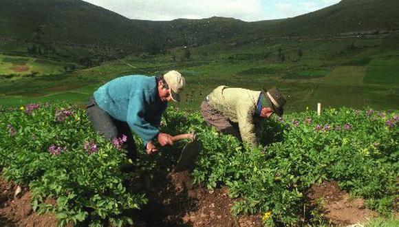 Minagri trabajará con el Gobierno regional y la Dirección Regional de Agricultura del Cusco.(Foto: Difusión)
