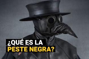 ¿Qué es la peste negra?