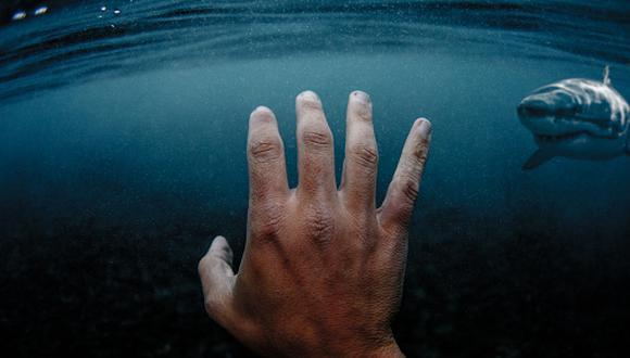 En cuanto a tiburones, aquella isla francesa representa uno de los puntos más peligrosos del mundo. (GETTY)