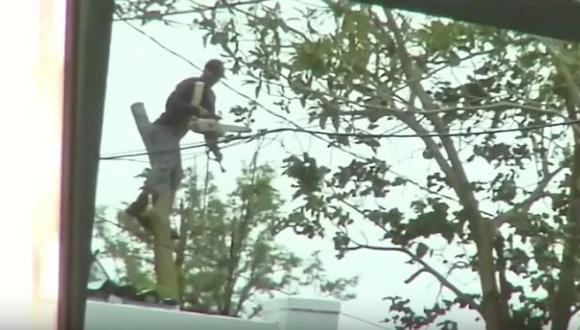 Hombre murió accidentalmente al cortar su cuello con una motosierra al limpiar tras huracán Irma (Univision/Difusión)