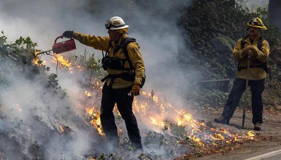 California ha tenido más de 600 incendios lo que ha generado el despliegue de 14.000 bomberos. (Foto: PETER DASILVA / EFE)