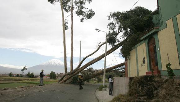 Vientos ocasionaron que viejos árboles y postes cayeran sobre las viviendas. (Heiner Aparicio)