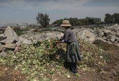 Fiscalización en sector agro debe ser presencial y con ayuda de drones, según PwC