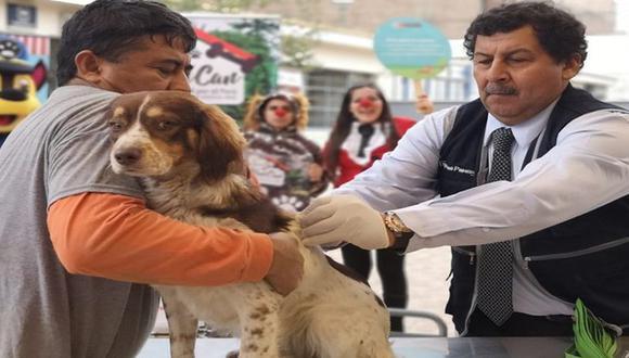 El Minsa explicó que personal de salud, debidamente identificado, aplicará las dosis de vacunas contra la rabia a las mascotas. (Difusión)