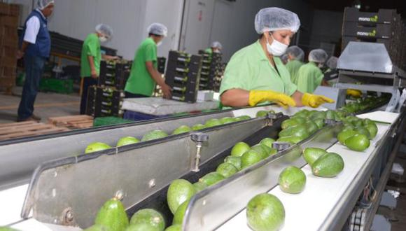 Agroexportaciones crecieron 4% en los primeros cuatro meses del 2016. (USI)