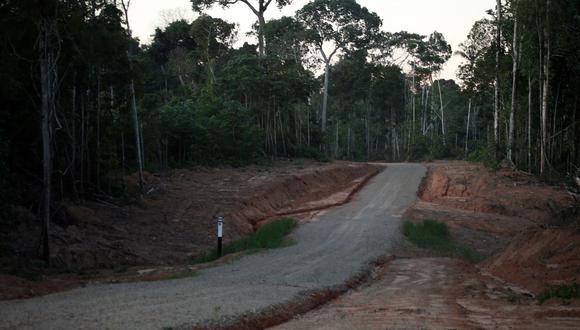 La Amazonía ha perdido miles de hectáreas de bosques. (Imagen referencial/GEC)