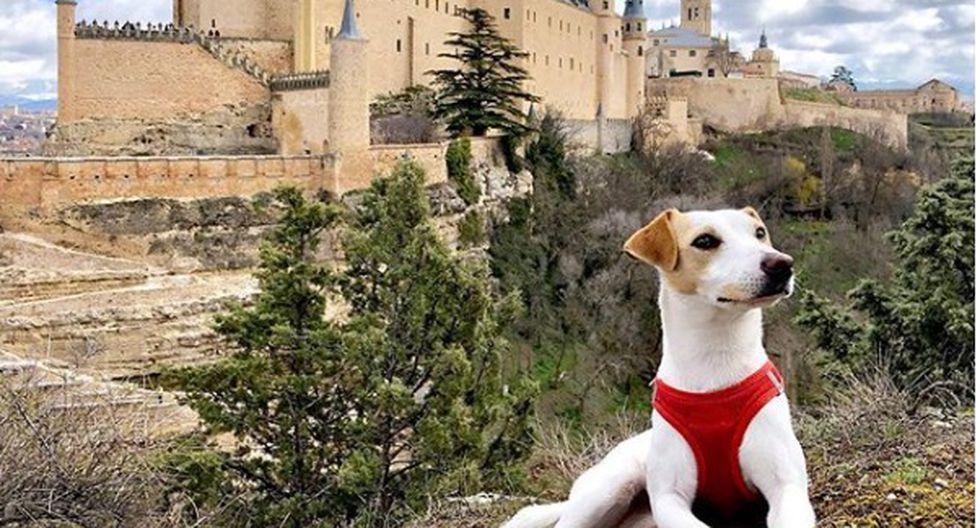 El periodista Pablo Muñoz Gabilondo y su perro Pipper se han propuesto conocer los puntos más turísticos de España y contar su experiencia.