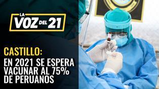 """Carlos Castillo: """"Esperamos vacunar a el 75% de la población"""""""