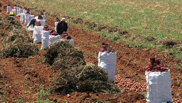 Los productores agropecuarios podrán acogerse a esta ley hasta junio del próximo año. (Foto: USI)