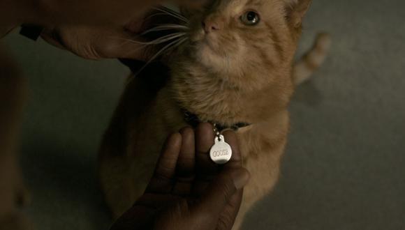 Captain Marvel: ¿quién es Goose? La historia del gato de Carol Danvers (Foto: Marvel Studios)