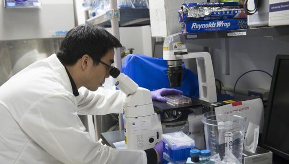 Investigadores también comprobaron que cuando se trasplantaron células zombis a ratones jóvenes, básicamente actuaron como si fueran más viejos. (Foto referencial: AFP)