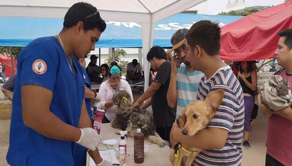 Las atenciones realizadas por los especialistas del Colegio Médico Veterinario del Perú estuvieron orientadas principalmente para los animales que sufrieron algún daño producto de la inundación. (Foto: Difusión Minsa)