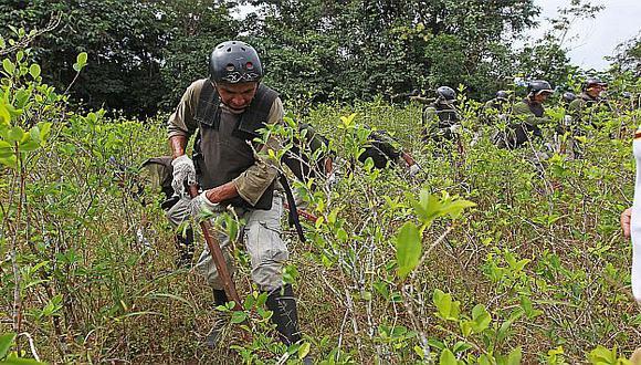 Devida identificó aproximadamente 60 mil hectáreas de coca en Perú. (USI)